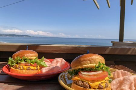 テディーズビガーバーガー鎌倉七里ヶ浜店が絶景すぎる。ぶ厚いバーガー片手に大海原を一望しよう